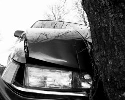 Car insurance covering Long Stays in Europe